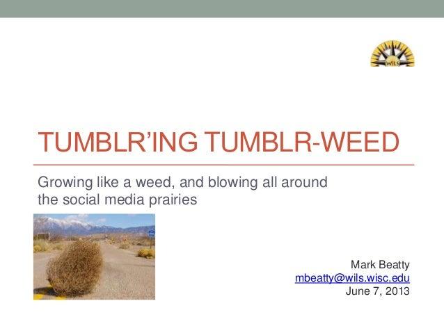 TUMBLR'ING TUMBLR-WEEDGrowing like a weed, and blowing all aroundthe social media prairiesMark Beattymbeatty@wils.wisc.edu...