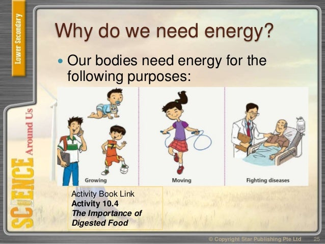 why do living things need energy Living things require energy to maintain internal organization (homeostasis) and to produce the other phenomena associated with life growth: maintenance of a higher rate of anabolism than catabolism.