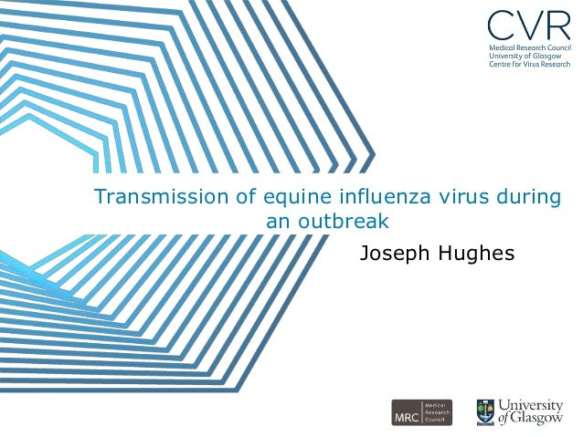 Transmission of equine influenza virus during                an outbreak                         Joseph Hughes
