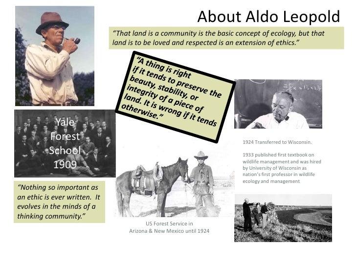 Aldo leopold essay odyssey