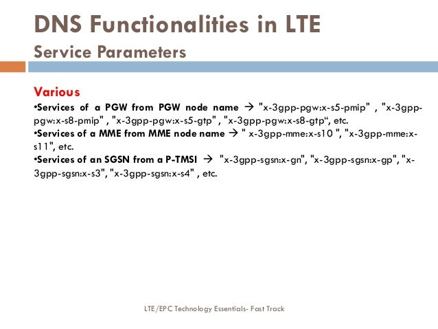 """DNS Functionalities in LTE Service Parameters Various •Services of a PGW from PGW node name  """"x-3gpp-pgw:x-s5-pmip"""" , """"x-..."""