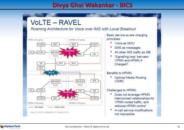 Divya Ghai Wakankar - BICS Non Confidential – Public © eXplanoTech Ltd. 42