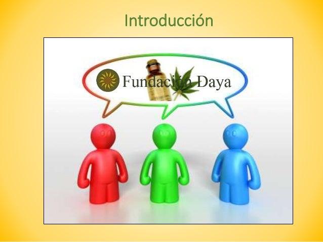 Plan de Relaciones Públicas para Fundación Daya Slide 2
