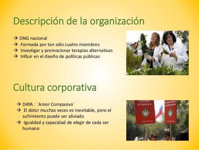 Plan de Relaciones Públicas para Fundación Daya Slide 3