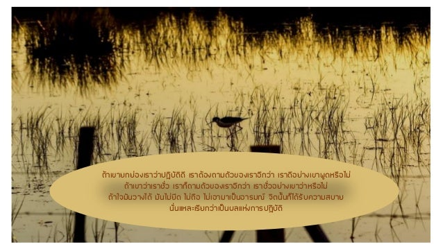 Luangpoo chansri Slide 3