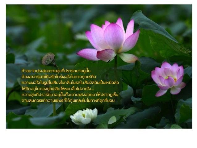 Luangpoo parom Slide 3