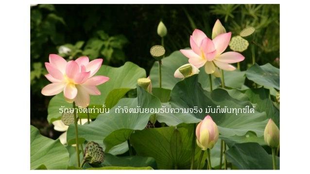 Luangpoo suwat Slide 2