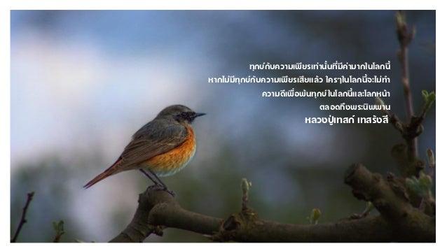 Luangpoo taste Slide 3