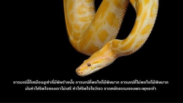 Luangpor chah preaching2 Slide 2