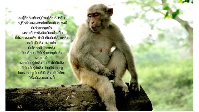 Luangpor chah preaching5 Slide 3