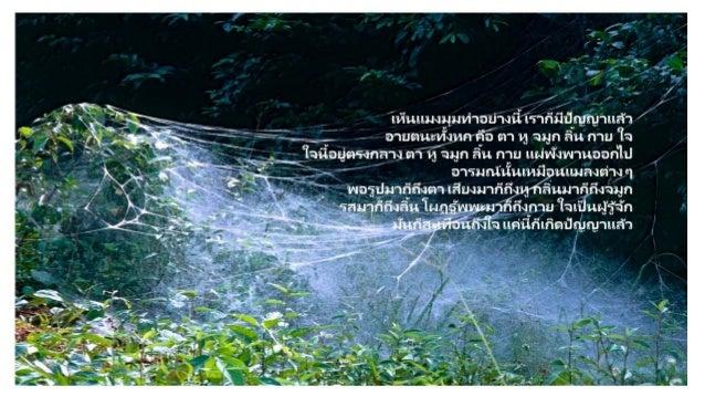 Luangpor chah preaching7 Slide 3