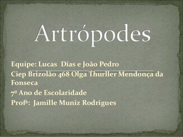 Equipe: Lucas Dias e João Pedro Ciep Brizolão 468 Olga Thurller Mendonça da Fonseca 7º Ano de Escolaridade Profª: Jamille ...
