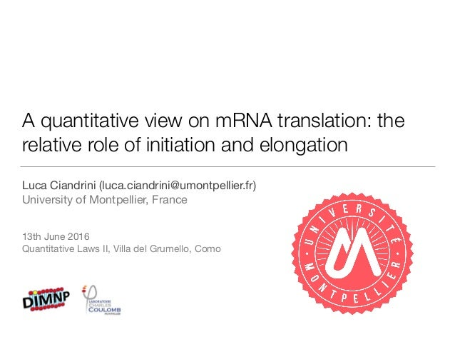A quantitative view onmRNA translation: the relative role of initiation and elongation Luca Ciandrini (luca.ciandrini@umo...