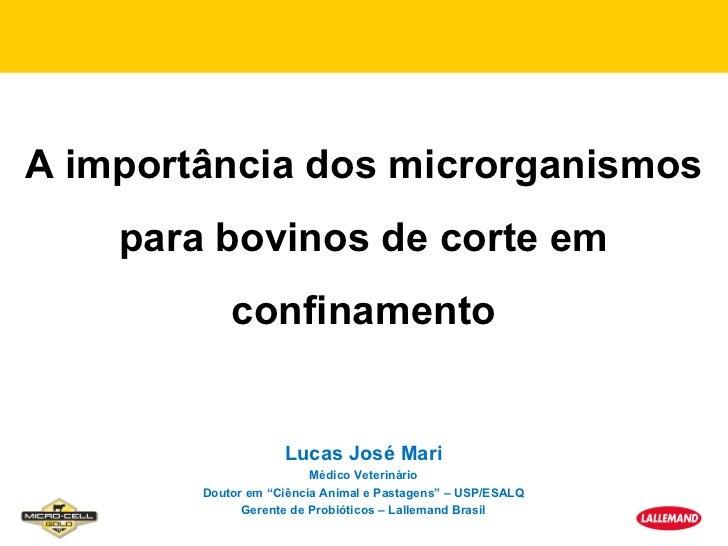 A importância dos microrganismos    para bovinos de corte em            confinamento                    Lucas José Mari   ...