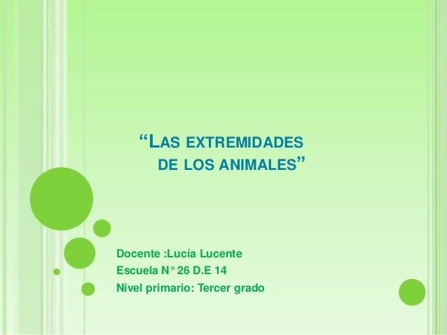 """""""LAS EXTREMIDADES DE LOS ANIMALES""""  Docente :Lucía Lucente Escuela N° 26 D.E 14 Nivel primario: Tercer grado"""