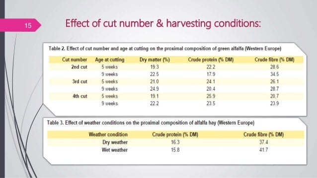 Effect of cut number & harvesting conditions:15