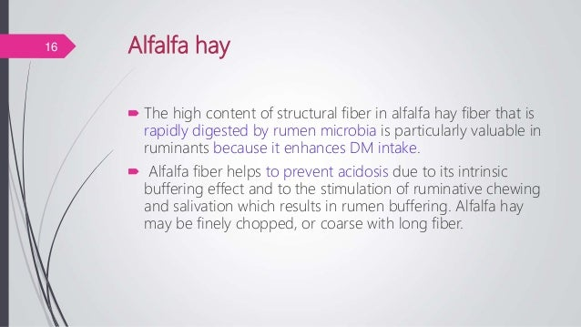 Alfalfa hay  The high content of structural fiber in alfalfa hay fiber that is rapidly digested by rumen microbia is part...