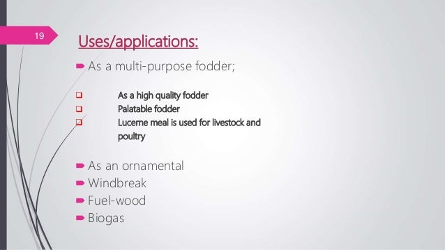 Uses/applications: As a multi-purpose fodder;  As a high quality fodder  Palatable fodder  Lucerne meal is used for li...