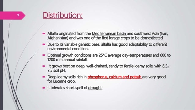 Distribution:7  Alfalfa originated from the Mediterranean basin and southwest Asia (Iran, Afghanistan) and was one of the...