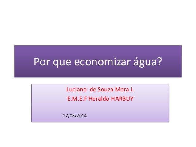 Por que economizar água? Luciano de Souza Mora J. E.M.E.F Heraldo HARBUY 27/08/2014
