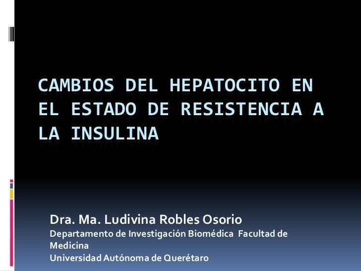 CAMBIOS DEL HEPATOCITO EN EL ESTADO DE RESISTENCIA A LA INSULINA<br />Dra. Ma.Ludivina Robles Osorio<br />Departamento de ...