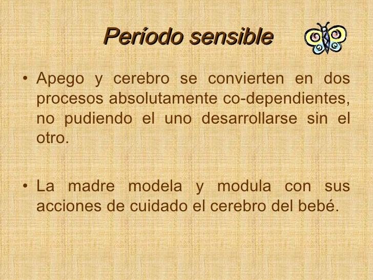 Período sensible <ul><li>Apego y cerebro se convierten en dos procesos absolutamente co-dependientes, no pudiendo el uno d...