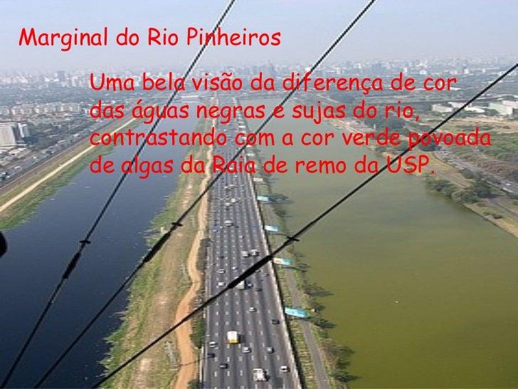 Marginal do Rio Pinheiros Uma bela visão da diferença de cor das águas negras e sujas do rio, contrastando com a cor verde...