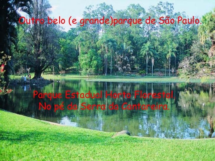 Outro belo (e grande)parque de São Paulo. Parque Estadual Horto Florestal. No pé da Serra da Cantareira.