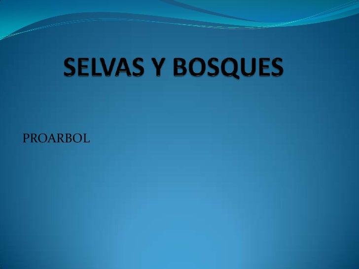 SELVAS Y BOSQUES<br />PROARBOL<br />