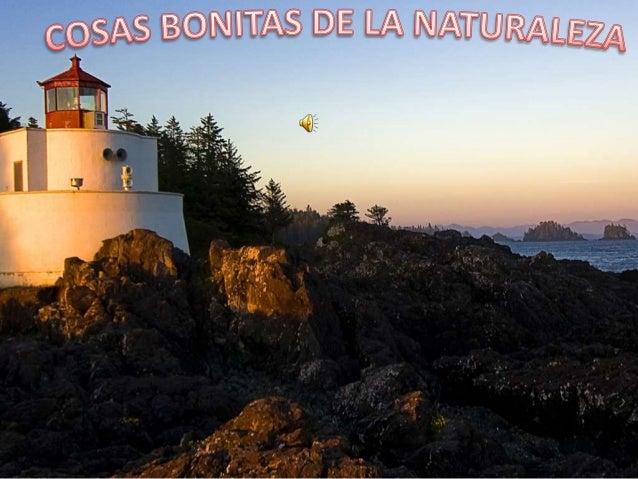 Luis Bolivar presentacion naturaleza