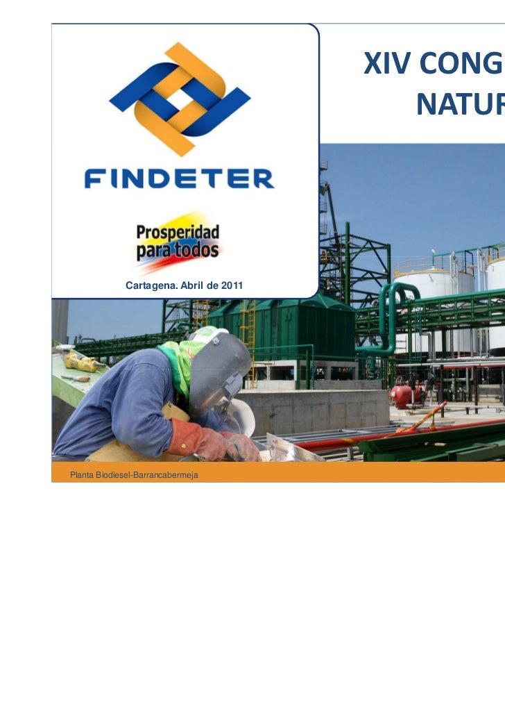 XIV CONGRESO DE                                            NATURGAS             Cartagena. Abril de 2011Planta Biodiesel-B...