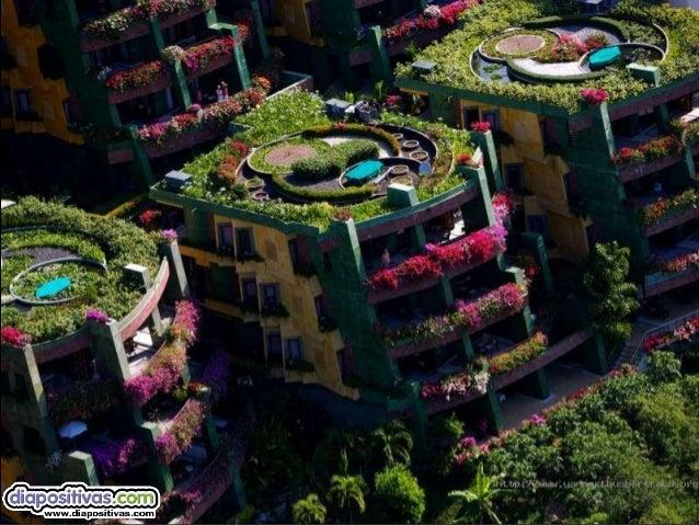 Luis Salvador Velazquez: maravillas desde el aire