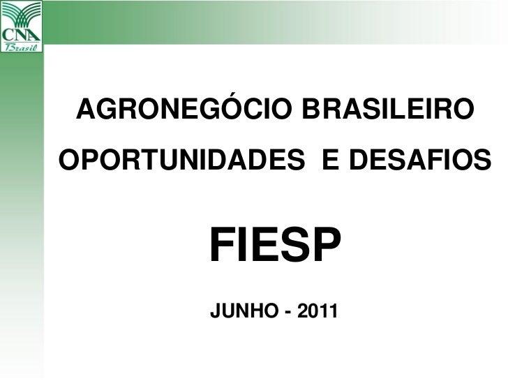 AGRONEGÓCIO BRASILEIROOPORTUNIDADES E DESAFIOS        FIESP        JUNHO - 2011