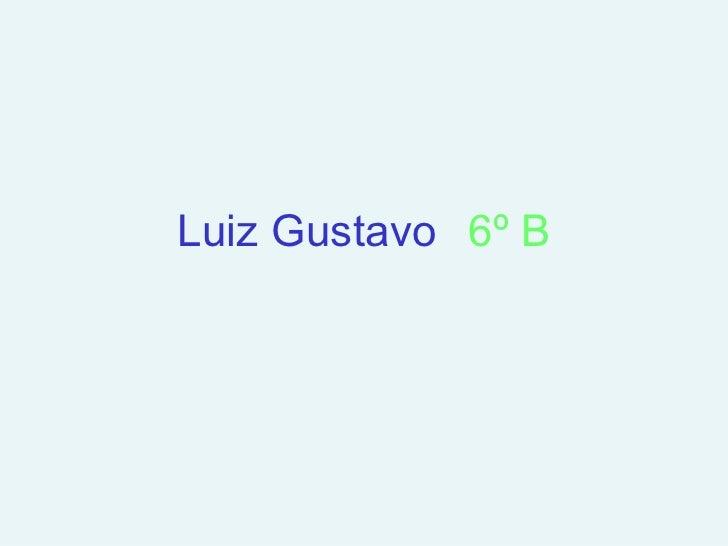 Luiz Gustavo 6º B