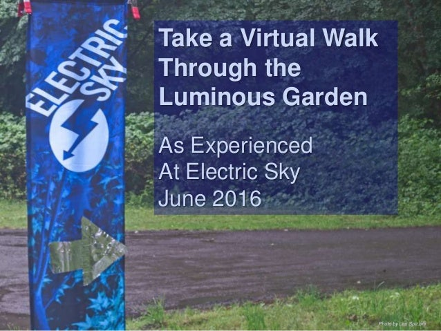 Take a Virtual Walk Through the Luminous Garden As Experienced At Electric Sky June 2016 Photo by Leo Spizzirri