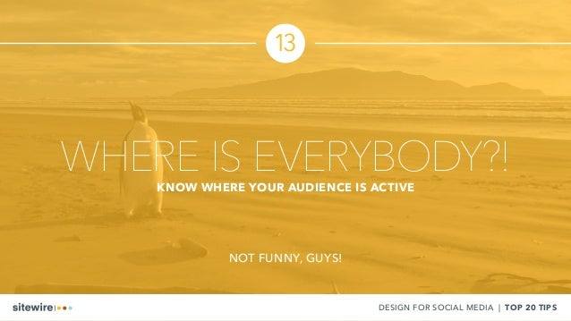 13 DESIGN FOR SOCIAL MEDIA | TOP 20 TIPS WHERE IS EVERYBODY?!KNOW WHERE YOUR AUDIENCE IS ACTIVE NOT FUNNY, GUYS!