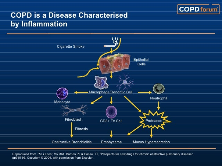 TAEM10: How To Help Copd Patients Feel Better And