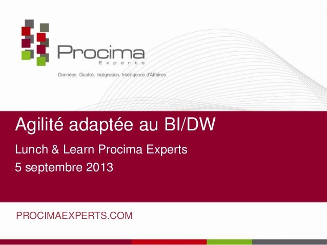 Agilité adaptée au BI/DW Lunch & Learn Procima Experts 5 septembre 2013 PROCIMAEXPERTS.COM