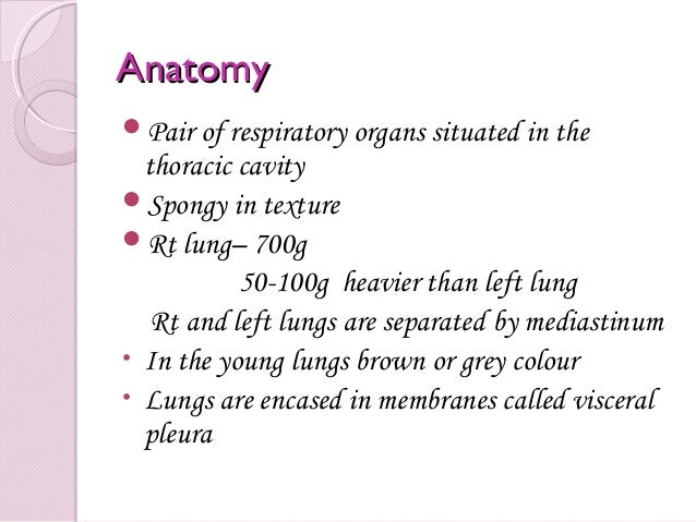 Anatomypathology Investigative Work Up And Staging Of Lung Cancer