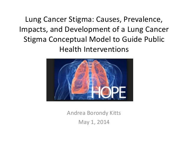 Lung Cancer Stigma: Causes, Prevalence, Impacts, and Development of a Lung Cancer Stigma Conceptual Model to Guide Public ...