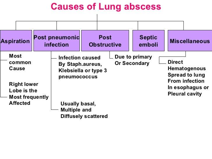 Lung pathology 1