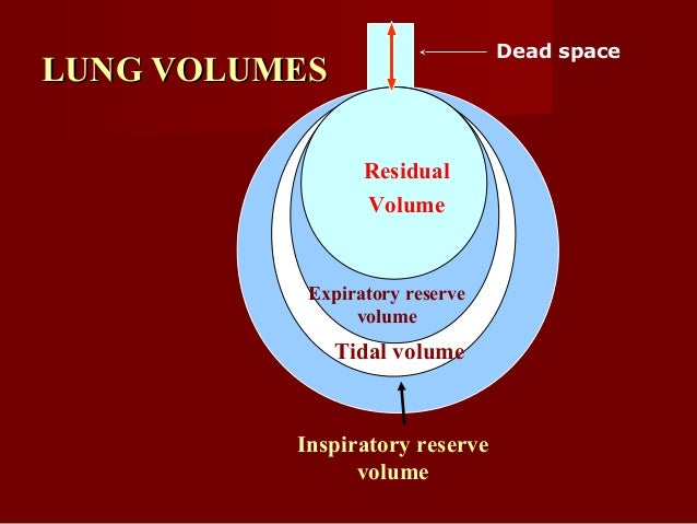 LUNG CAPACITIES