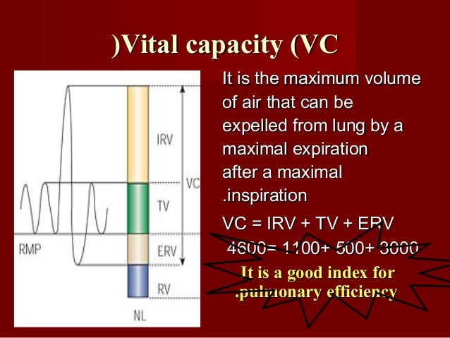 Lung volumes and capacities areLung volumes and capacities are Decreased inDecreased in The recumbent position than in sta...
