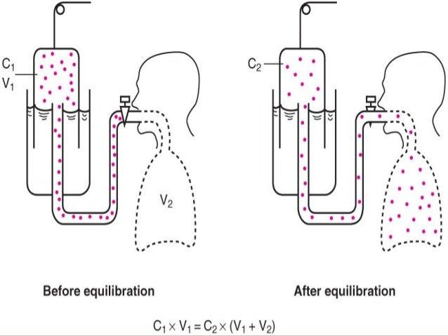Maximal voluntary ventilationMaximal voluntary ventilation