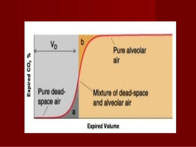 Functions of the dead spaceFunctions of the dead space:-:- Conduction of air to and from the alveoliConduction of air to a...