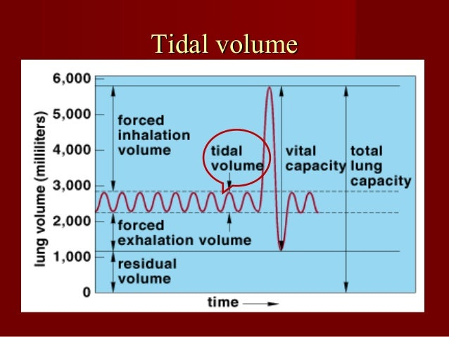Inspiratory reserve volume (IRVInspiratory reserve volume (IRV(( It is maximal volume of air which can be inspired after a...