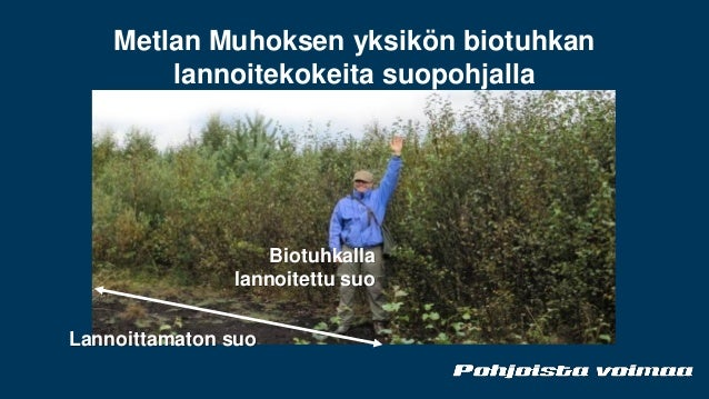 Juhani Järvelä, Oulun energia Oy - Lähienergia – suuri mahdollisuus S…