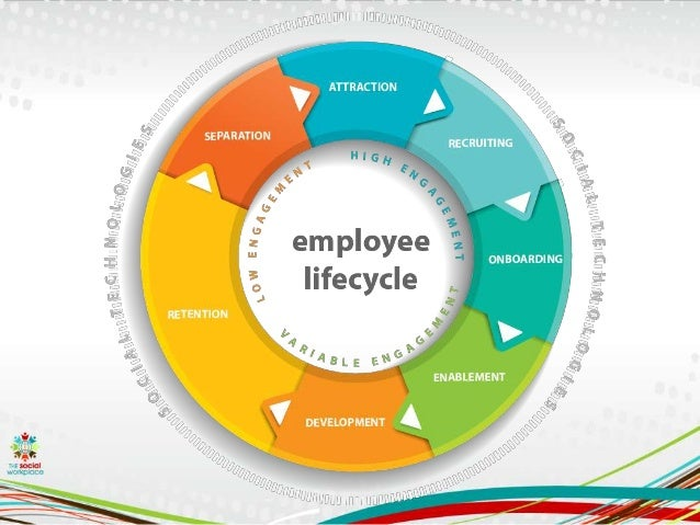 hr life cycle process Caring about your company's employee life cycle industry publication the hr and from development to feedback and promotion is a process that.