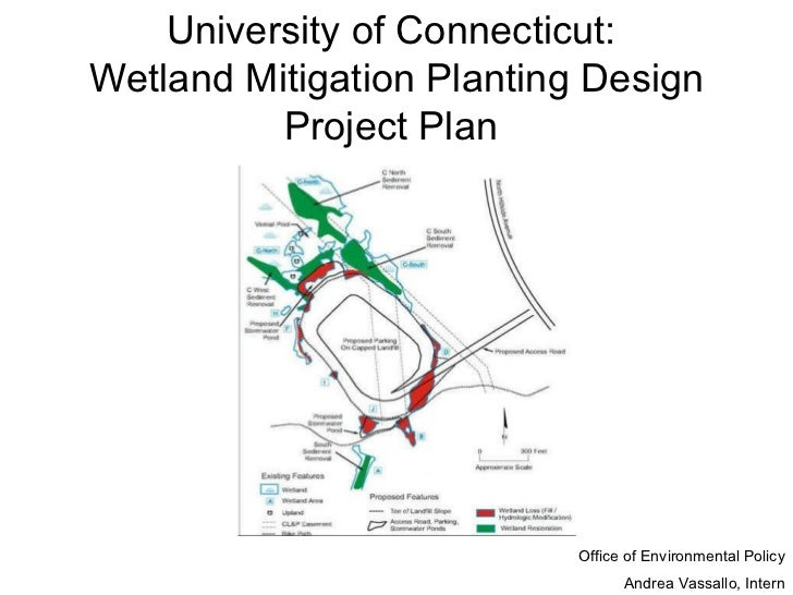 University of Connecticut:  Wetland Mitigation Planting Design Project Plan   Office of Environmental Policy Andrea Vassal...