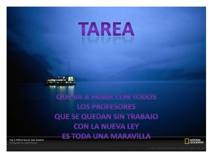 TAREA <br />QUE VA A PASAR CON TODOS <br />LOS PROFESORES <br />QUE SE QUEDAN SIN TRABAJO <br />CON LA NUEVA LEY <br />ES ...